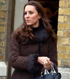 kate middleton 2010, kate middleton eyebrows, kate middleton oops, prince william and kate middleton pregnant