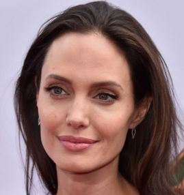 angelina jolie ethnicity, angelina jolie charity, angelina jolie s tattoos, angelina jolie fansite